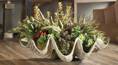 Coastal Living - Succulents by The Sea Arrangement